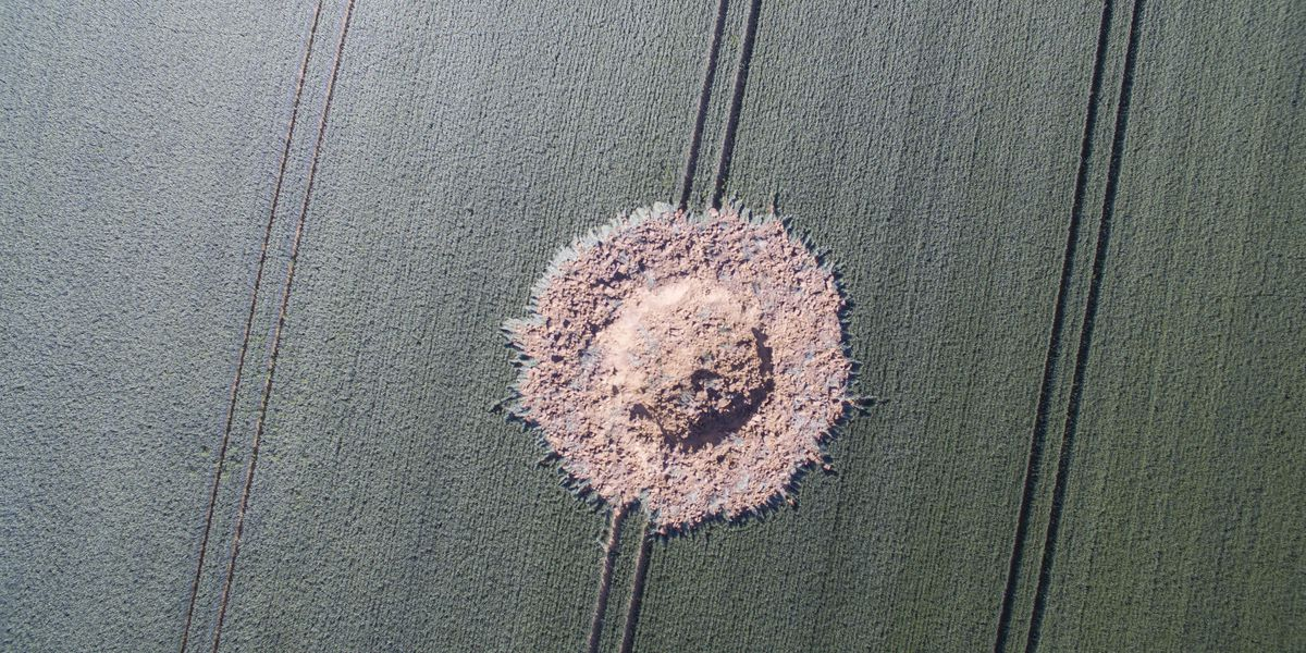 Crater in appears in German field apparently caused by WWII bomb