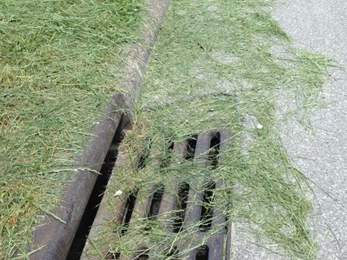 Ohio city warns against dumping lawn clippings into the roadway, mayor calls it a safety issue