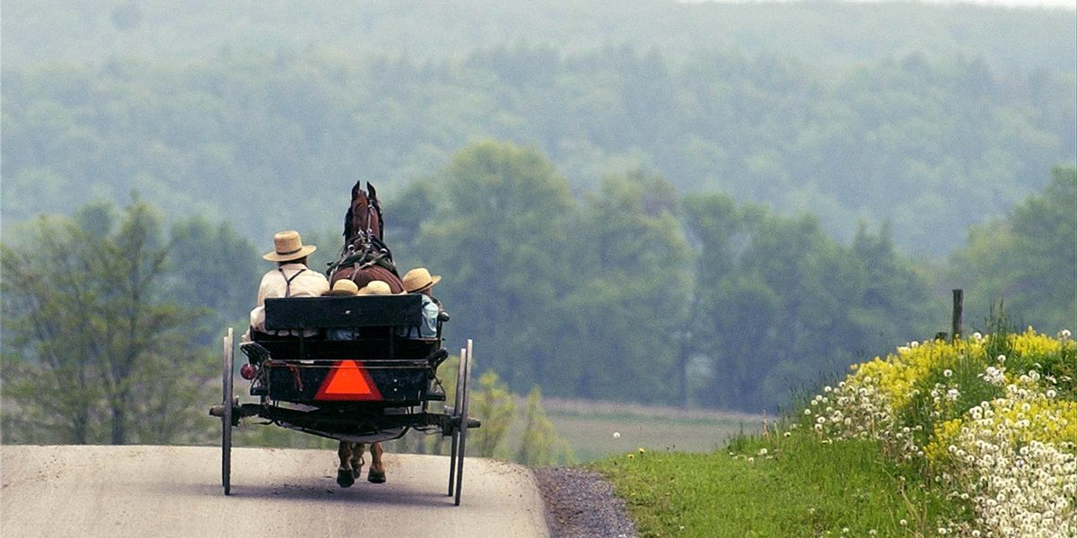 Lawmakers hope flashing lights cut down on Amish buggy and car accidents