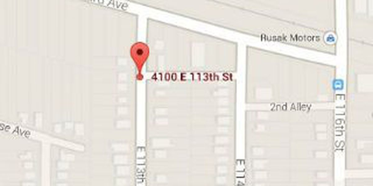 Male killed in fatal shooting on E. 113 identified