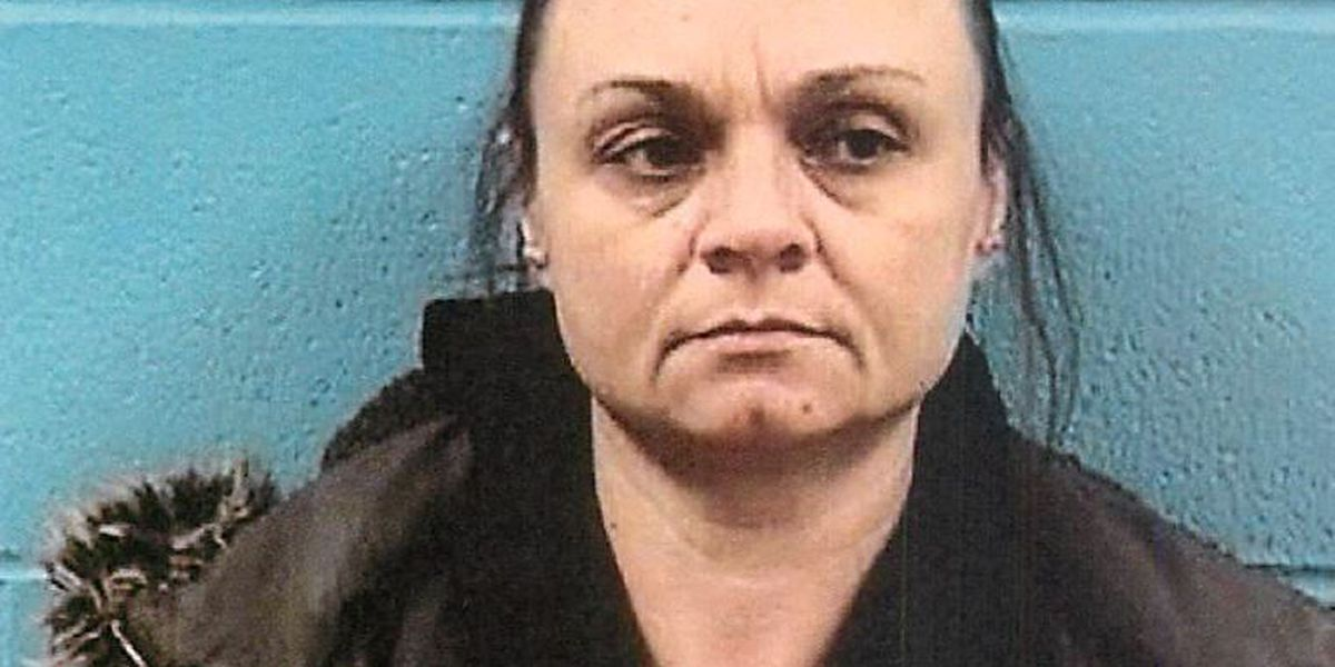 Avon woman in court for drunk, wrong-way driving
