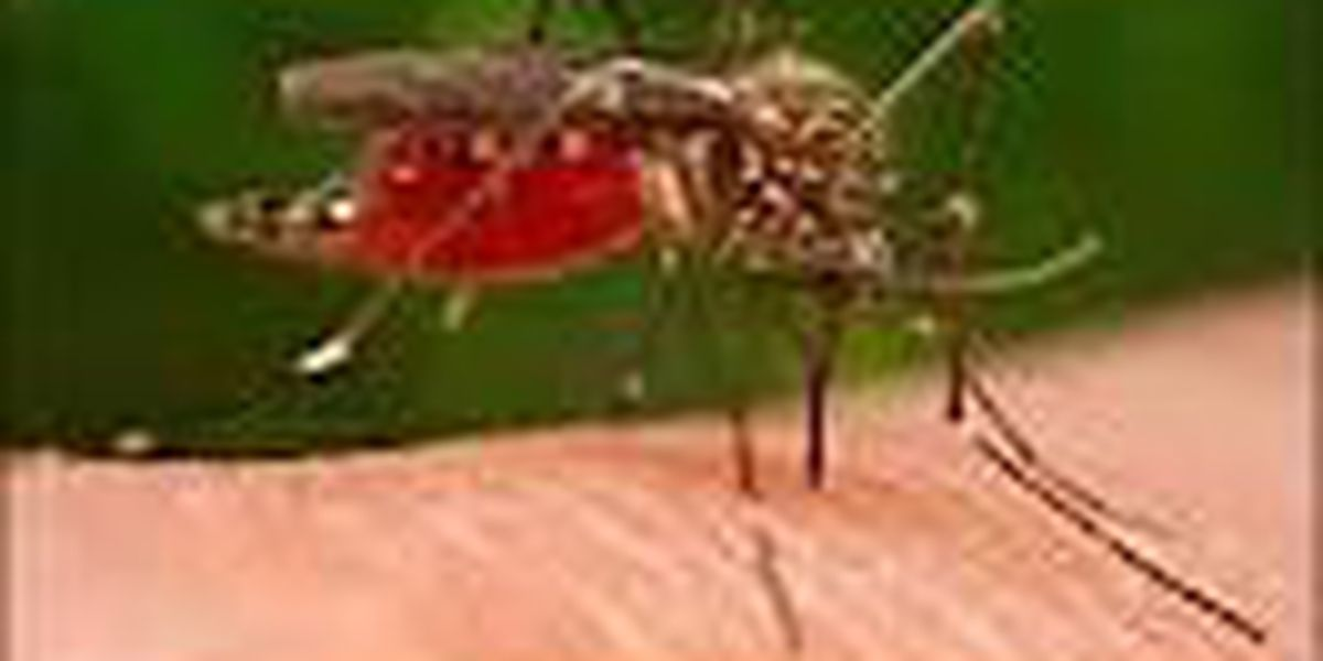 Cleveland man has West Nile