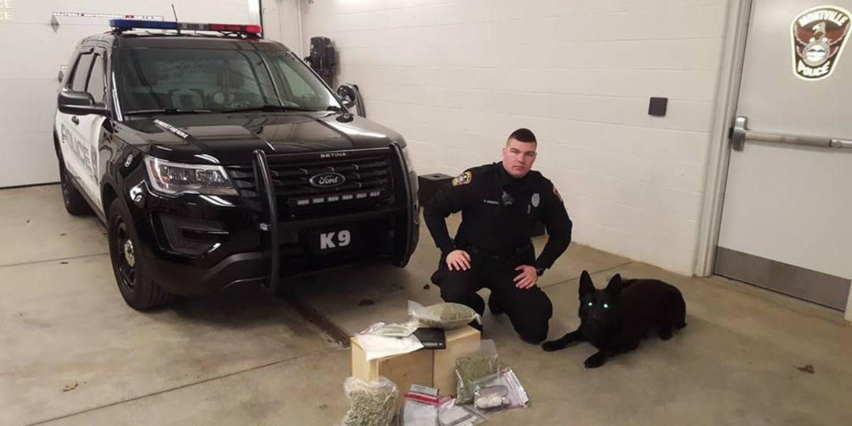 K9 sniffs out meth, marijuana and heroin