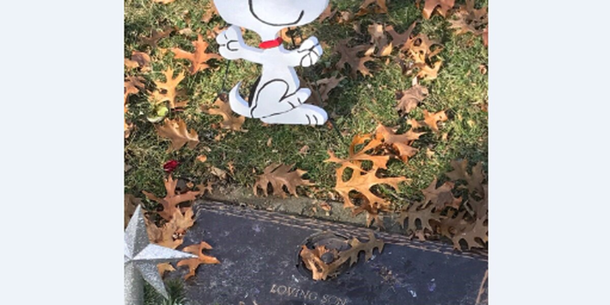 Cleveland couple saddened after homemade decoration is stolen from son's grave
