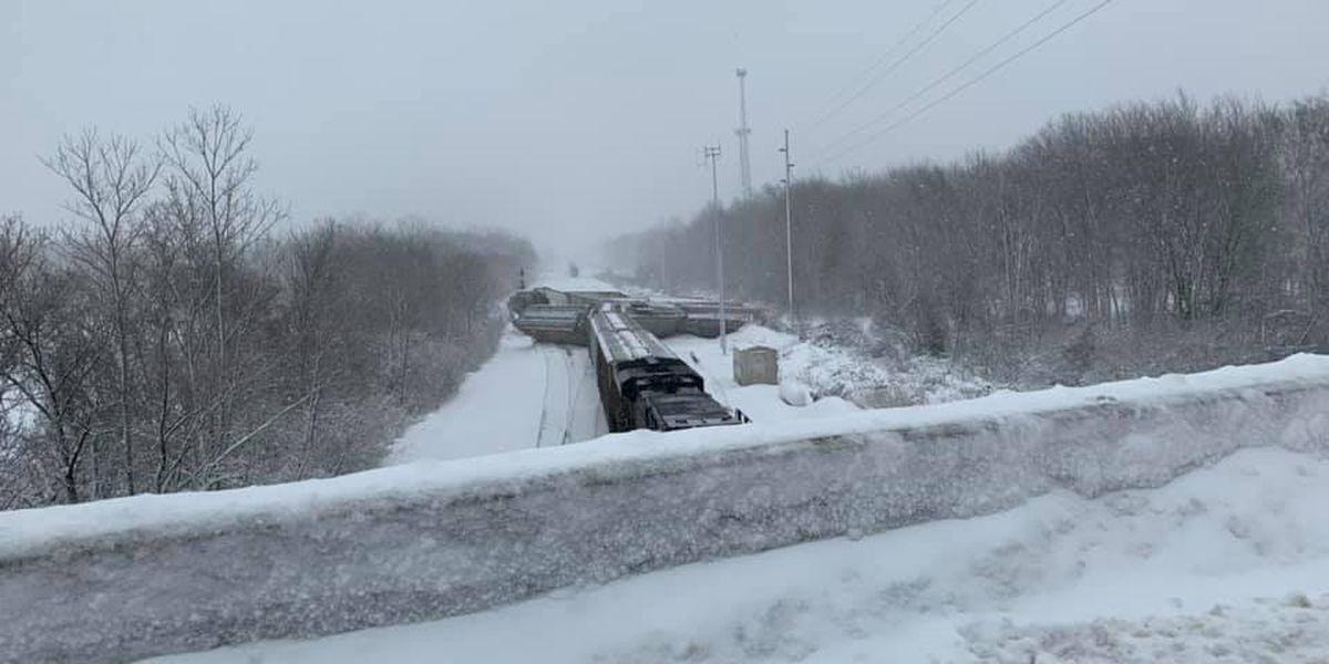 Norfolk Southern train derails in Amherst