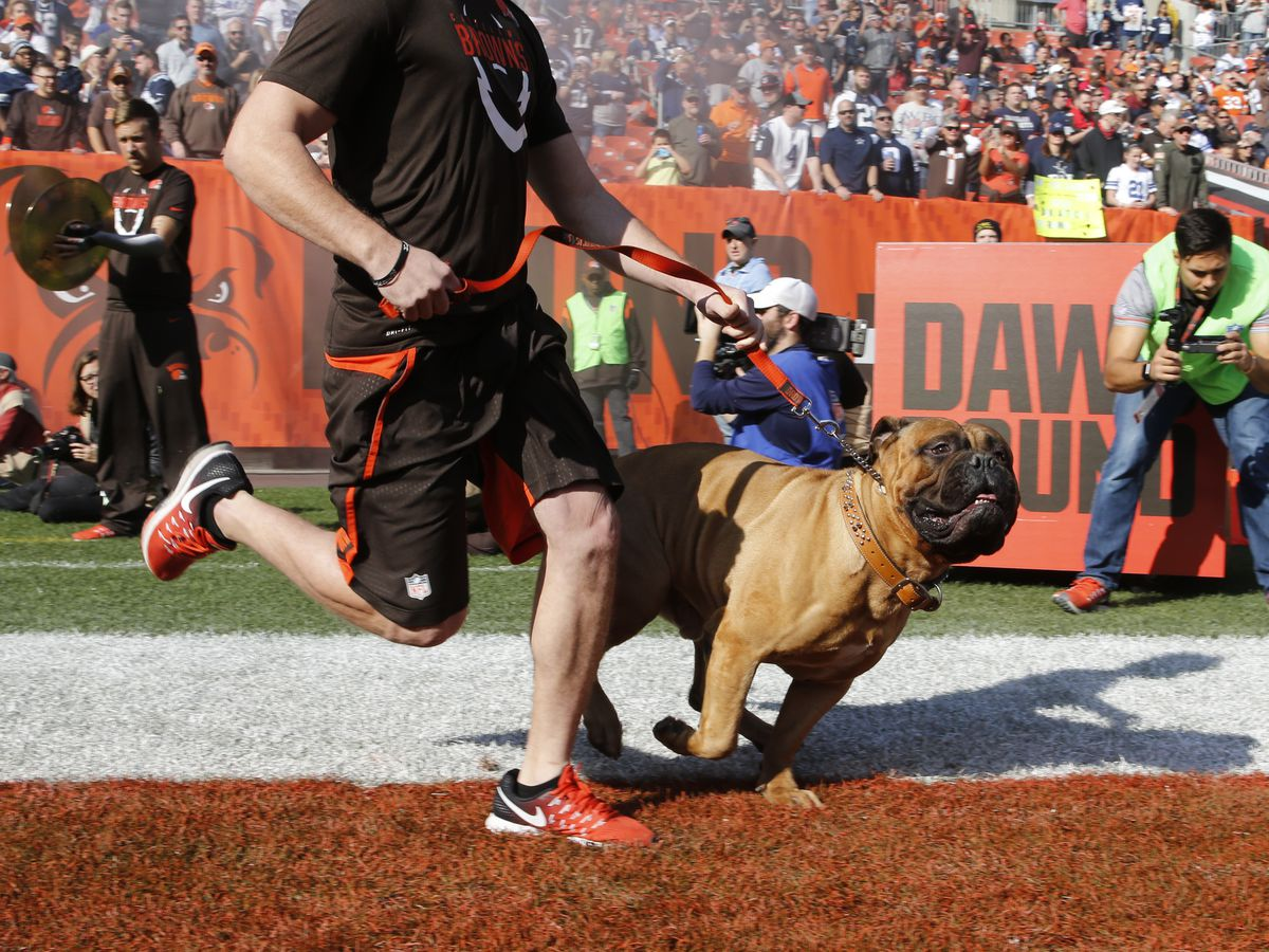 Cleveland Browns mascot Swagger honored in celebration of life ceremony