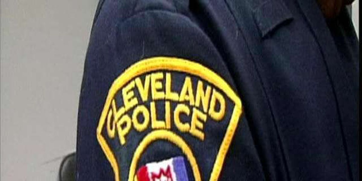 Cleveland Police detain 14-year-old with BB gun painted black