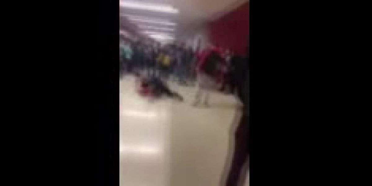 Cell phone video of Wadsworth High School fight