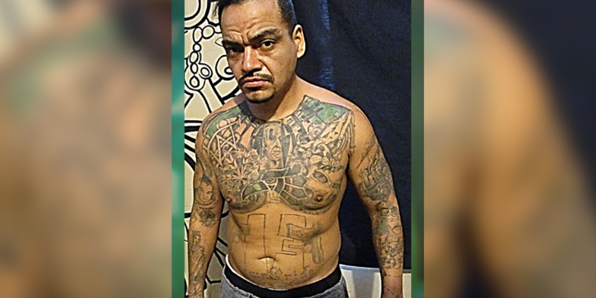 MS-13 gang member with lengthy criminal background captured in northern Ohio