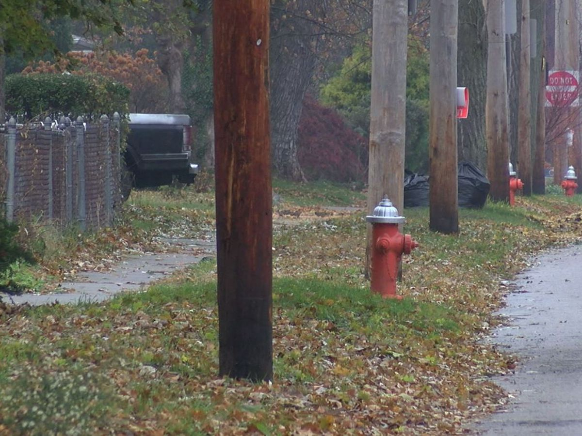 Cleveland Homicide Unit investigating after man found dead in a yard
