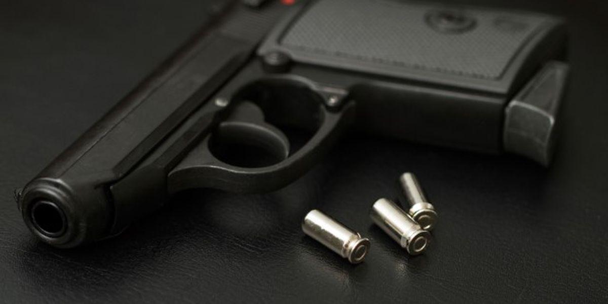 14-year-old Lorain County student brings loaded gun to school, deputies say