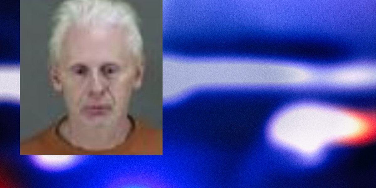 Bath Township man accused of running over 73-year-old pleads not guilty to hit-skip