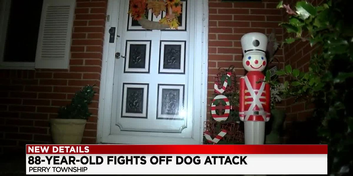 88-year-old Ohio army vet uses toy soldier to fight off pit bull that was attacking girl
